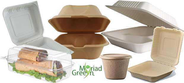 Biodegradable Bulk Wholesale Disposable Food Storage